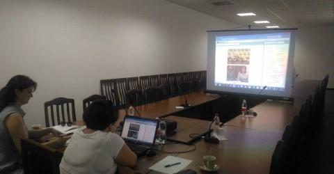 Онлайн-совещании с Комиссией Общественной палаты Российской Федерации по поддержке семьи, материнства и детства