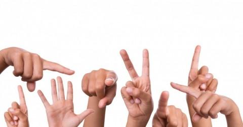 Видеокурс для изучения жестового языка